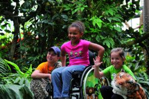 Choosing a Wheelchair